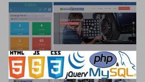 Web Sitesinde Özel Yazılıma İhtiyaç Var Mı?